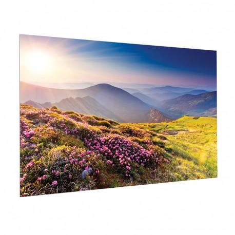 Milestone Projecta FullVision 163x260 HD Progressive 1.1 Co 10600844