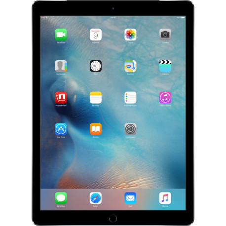 APPLE iPad Pro 2016 12,9 inch grijs 256 Gb 4G ML2L2NF/A